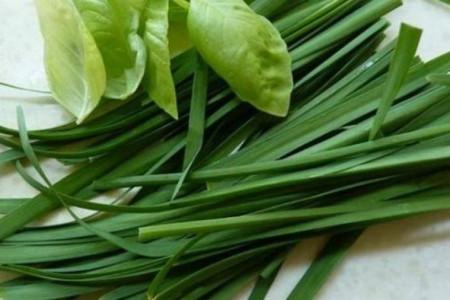 از خواص سبزی تره چه میدانید؟