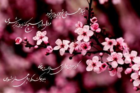 ۱۰ تا از زیباترین و ناب ترین شعرهای بهاری از شاعران بزرگ