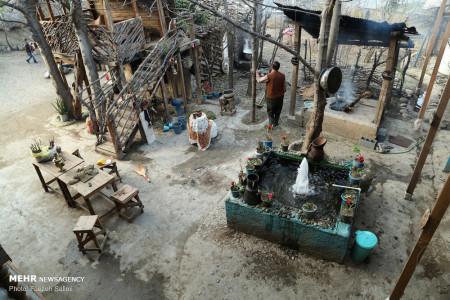 تصاویر زندگی در جنگلهای هیرکانی در روستای کمدره آمل