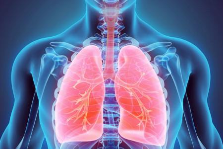 ۱۵ مواد غذایی فوق العاده تاثیر گذار برای تقویت ریه