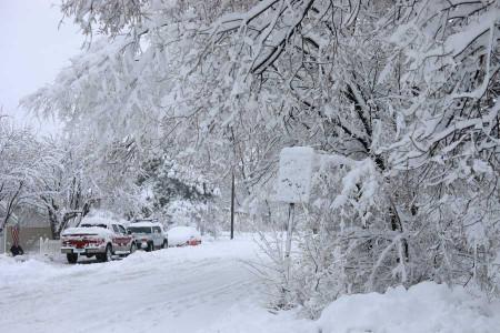 ماجرای طوفان برفی در مازندران چیست ؟