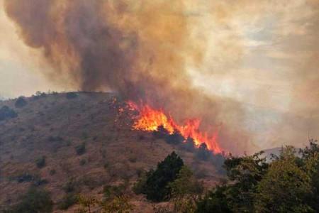 آتش سوزی مهیب در کوه دیل گچساران