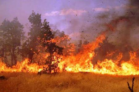 آتش سوزی کوه کُر جهرم مهار شد ؟