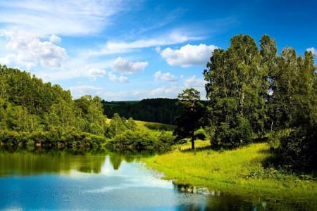 شعر طبیعت | مجموعه اشعار عاشقانه در مورد طبیعت از شاعران بزرگ