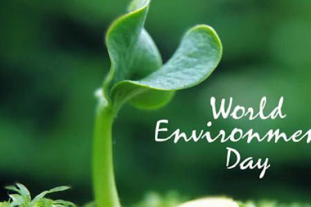 روز جهانی محیط زیست در سال ۹۹ چه روزی است ؟