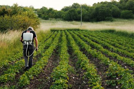 روز جهانی کارگران مزرعه در سال ۹۹ چه روزی است ؟