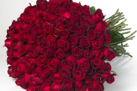 تاریخ روز جهانی گل رز قرمز در سال ۹۹ چه روزی است ؟