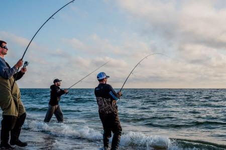روز جهانی ماهیگیری در سال ۹۹ چه روزی است ؟