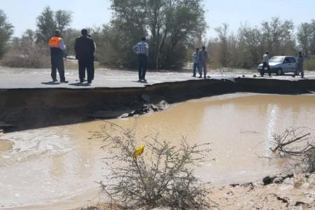 هشدار درباره احتمال بیماری شاربن در مناطق سیل زده ریگان