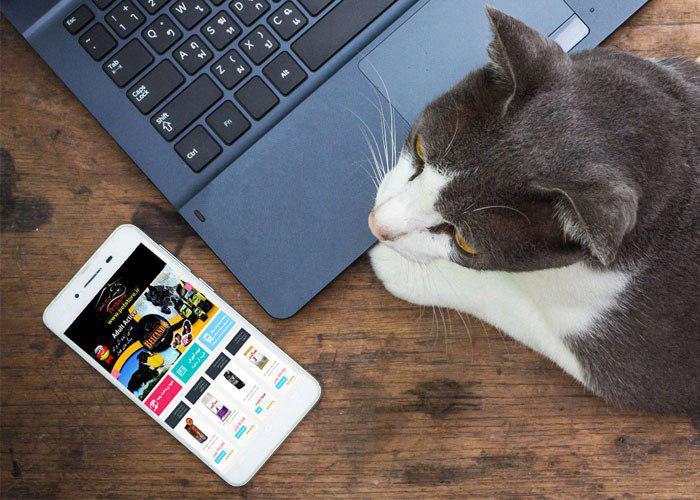 برای حیوانات خانگی خود آنلاین خرید کنید!