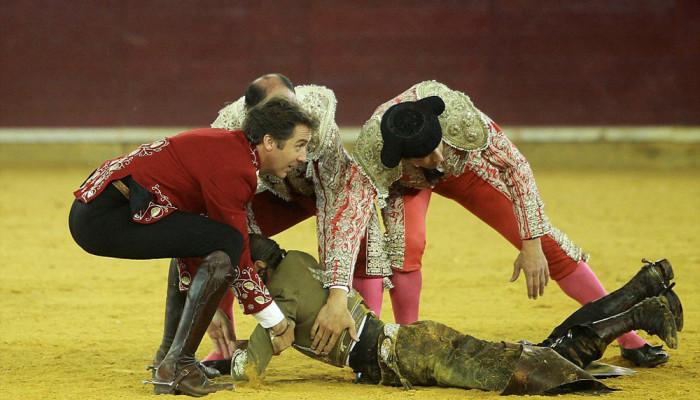 تصاویر رقابت گاوباز زن با گاو وحشی