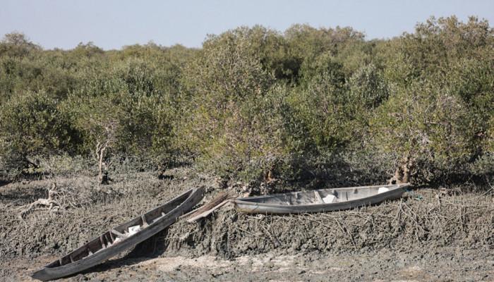 تصاویر اولین دوره مسابقات قایق های چوبی (هوری) در اسکله جنگل حرای سهیلی