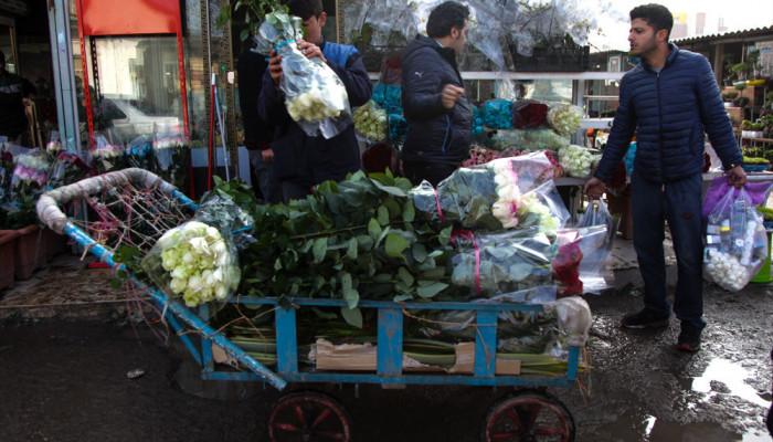 تصاویر بازار گل و گیاه