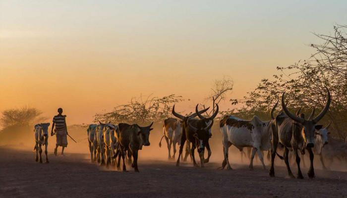 تصاویر سرزمین اتیوپی
