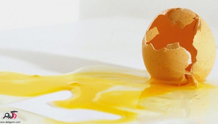 از کجا متوجه شویم که تخم مرغ خراب است؟