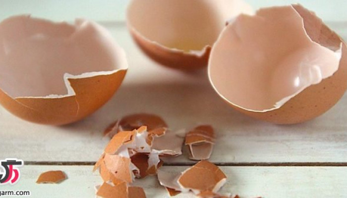 خواص جالب پوست تخم مرغ