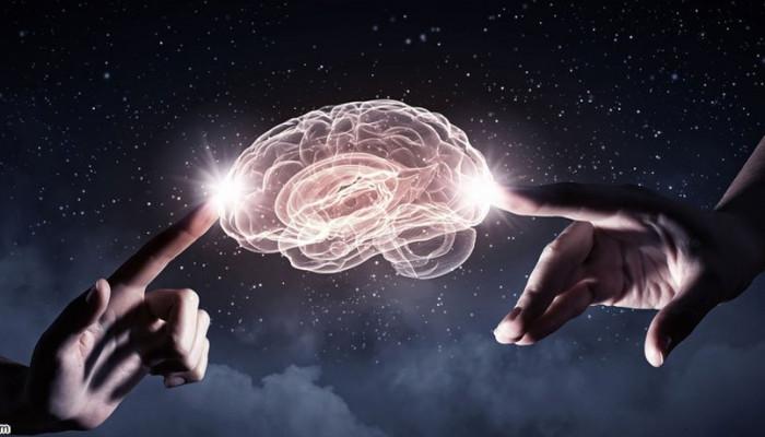 چگونه مغز شما تقویت می شود؟