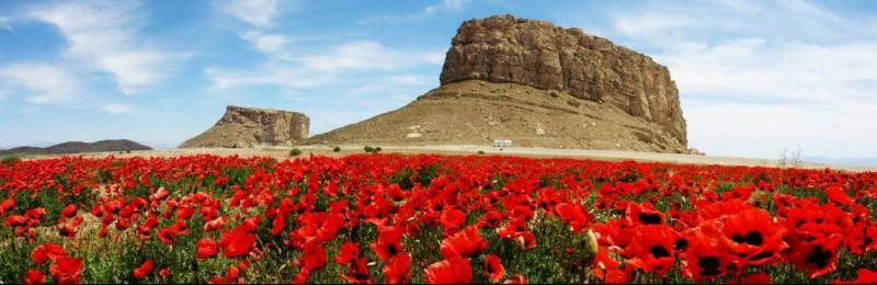 معرفی و شناخت قلعه های زیبای ایران