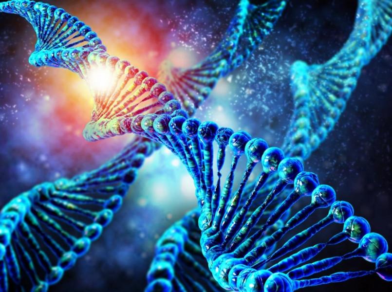 اهمیت آزمایش ژنتیک قبل از ازدواج