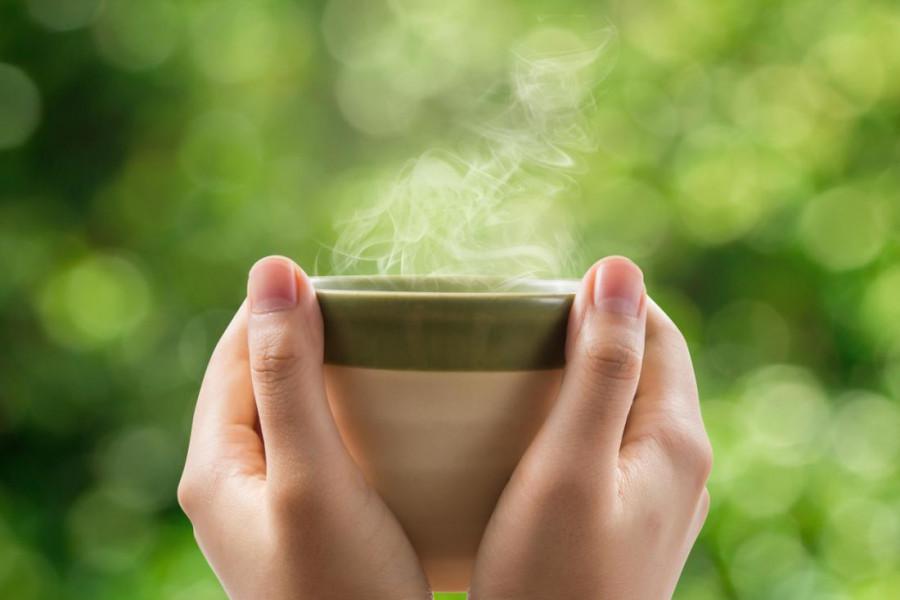 خواص درمانی و دارویی بیدمشک و چای بیدمشک
