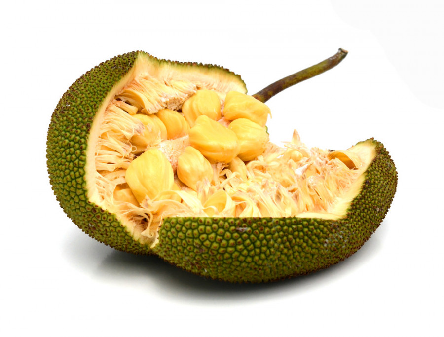 میوه جک فروت (Jackfruit) و خواص آن + عکس