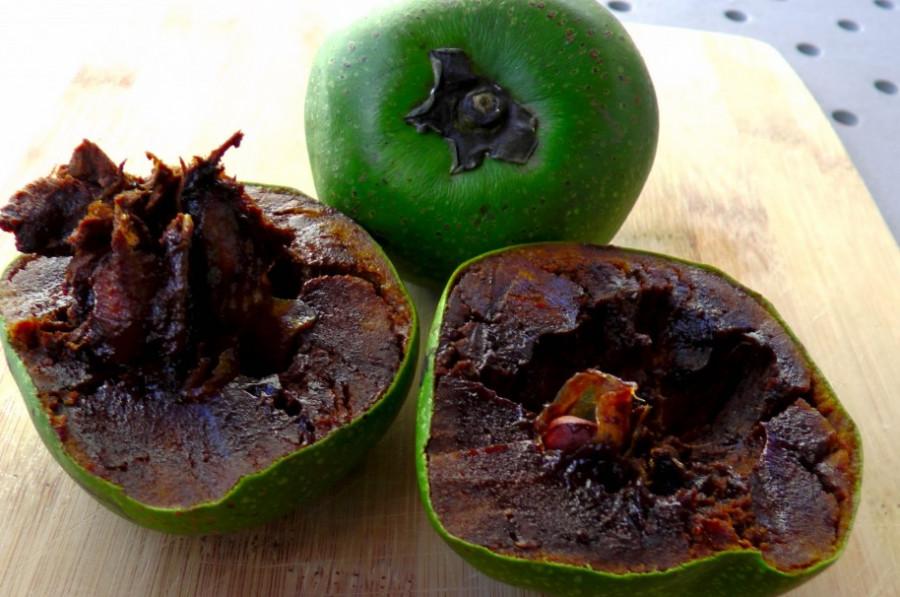 با گیاه ساپوت سیاه (black sapote) بیشتر آشنا شوید
