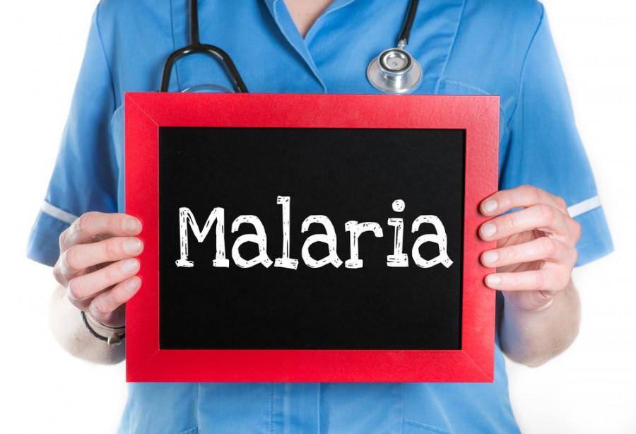 درمان طبیعی بیماری مالاریا با مواد غذایی