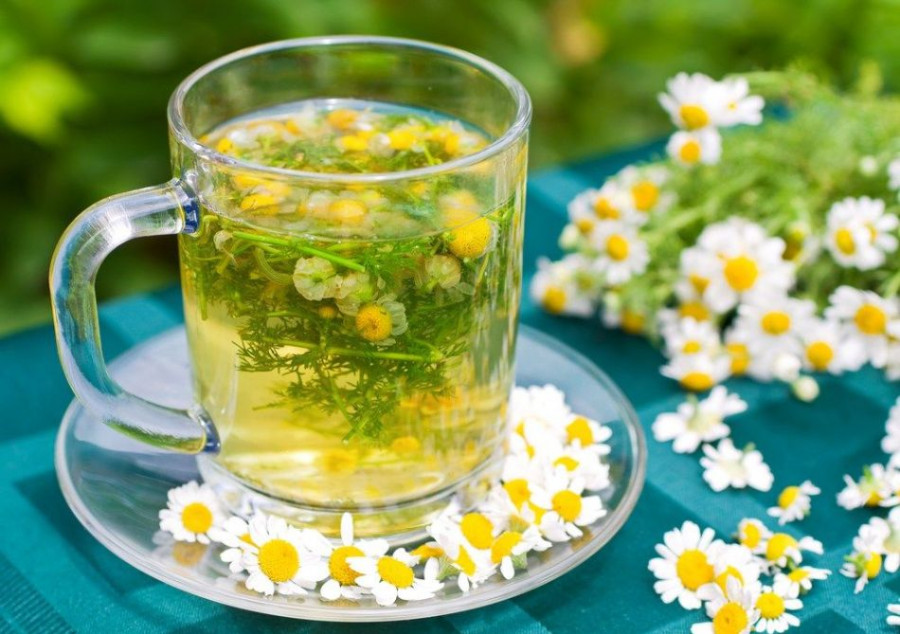 با چای بابونه سلامت خود و خانواده را تضمین کنید