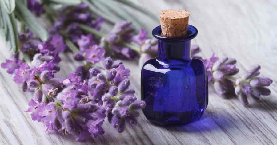 10 خاصیت جادویی روغن اسطوخودوس برای سلامتی