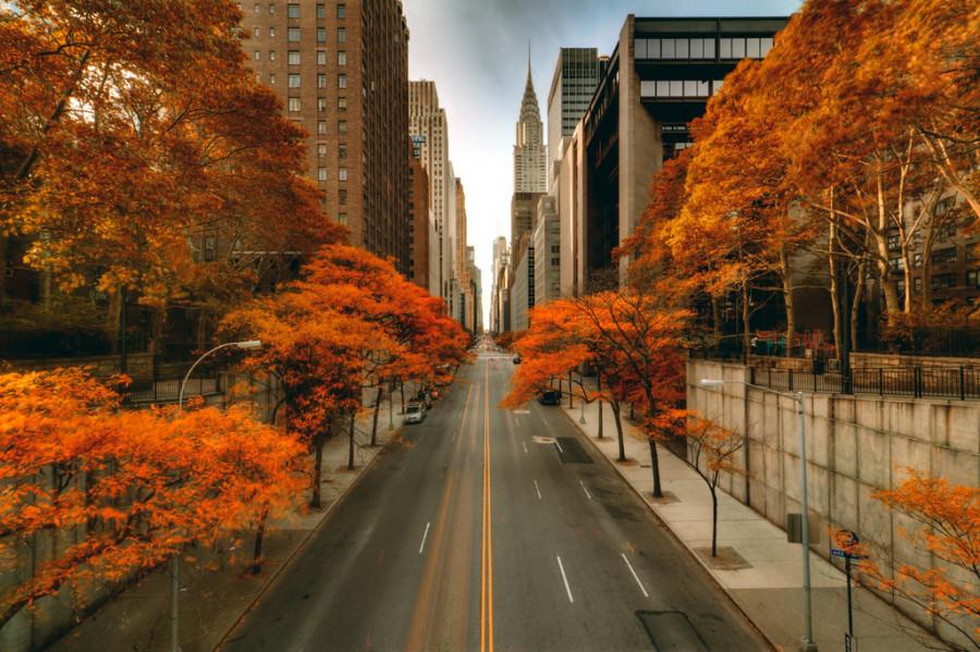 سفر به نیویورک در فصل پاییز