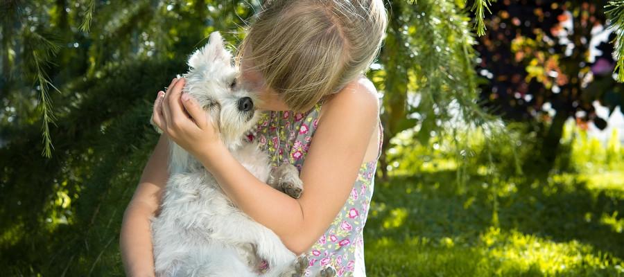 توکسوکاریازیس بیماری مشترک حیوان و انسان شناخته شده است و بسیار خطرناک برای انسان است