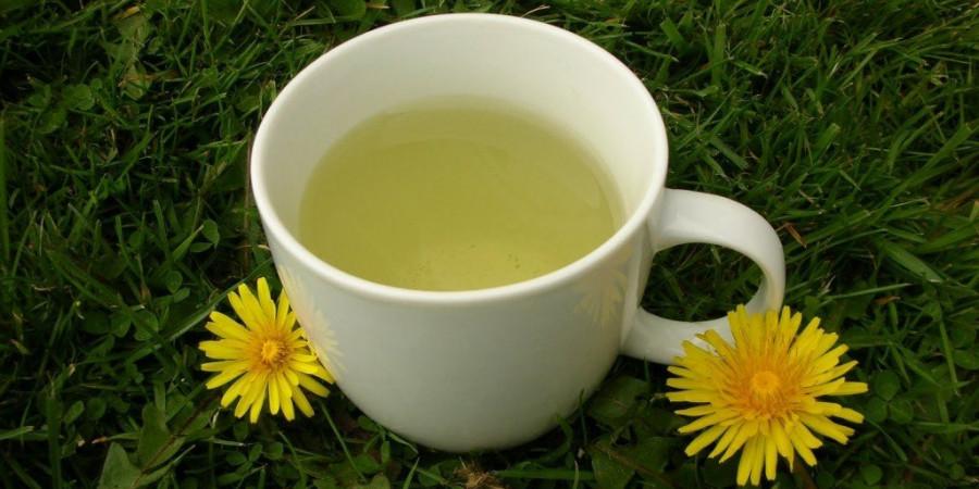 فواید چای برگ قاصدک